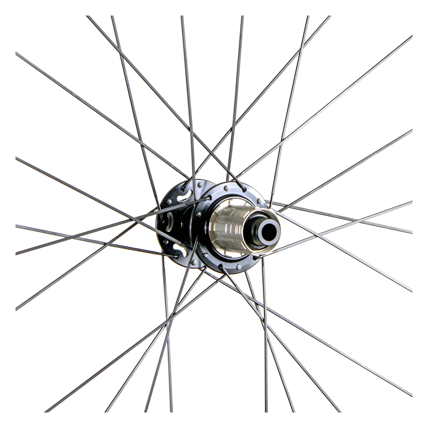 Venn Rea db S rear hub