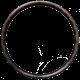 Venn Var 37 TCD jante en carbone enroulée en filament