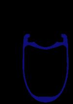 Venn VAR 45 rim profile